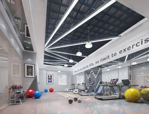 下得乐2019季千套模型, 现代, 健身室
