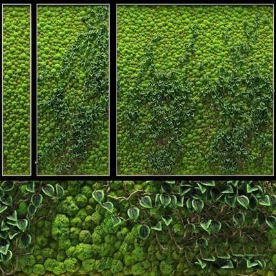现代, 植物, 植物墙, 背景墙, 绿植