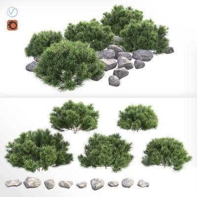 2000套高精3D单体模型, 现代, 灌木, 绿植, 植物