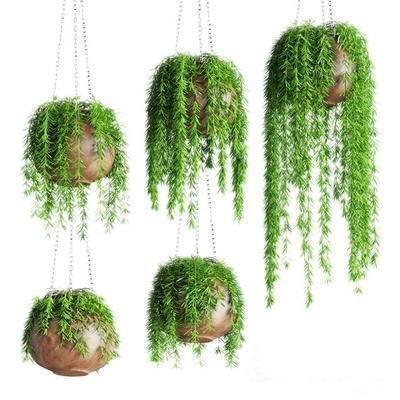 2000套高精3D单体模型, 现代, 盆栽, 植物, 吊篮, 绿植