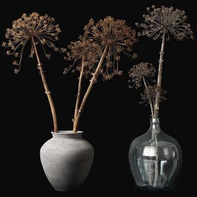 现代, 花瓶, 盆栽, 摆件