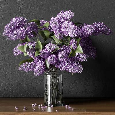 现代, 花瓶, 植物, 绿植, 摆件, 花卉