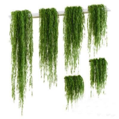 2000套高精3D单体模型, 现代, 汤唯, 植物, 绿植