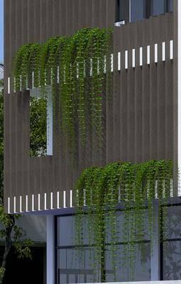 2000套高精3D单体模型, 现代, 藤蔓, 植物, 绿植