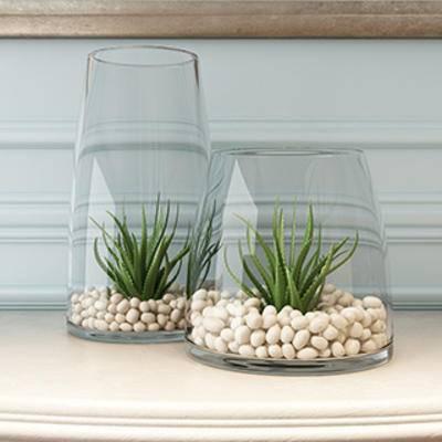 花卉盆栽植物, 蝴蝶兰, 盆栽装饰品, 花瓶装饰品, 盆景, 盆栽, 现代