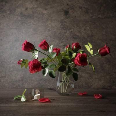 植物, 花瓶, 摆设品
