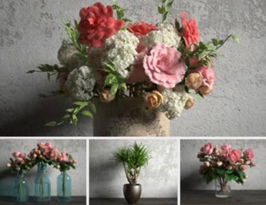 现代植物, 现代盆栽, 模型合集, 合集, 现代简约, 现代