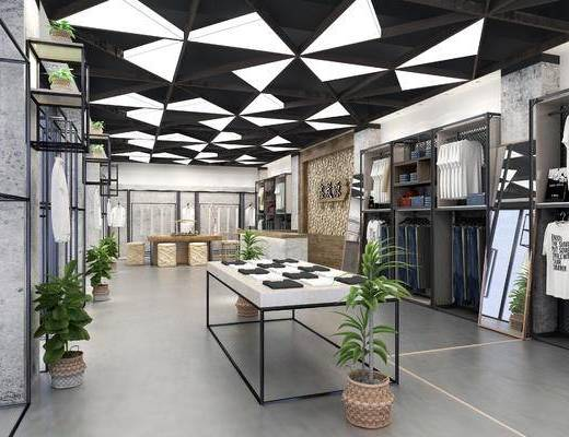 现代服装店, 服装店, 男装店, 衣服, 盆栽, 置物架