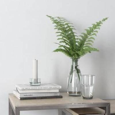 陈设品组合, 装饰组合, 欧式简约, 玻璃工艺品, 玻璃瓶, 烛台, 摆件, 玻璃杯, 蜡烛, 书籍, 陈列品, 植物