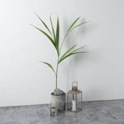 蜡烛灯, 装饰组合, 北欧简约, 玻璃制品, 摆件, 工艺品, 陈列品, 植物
