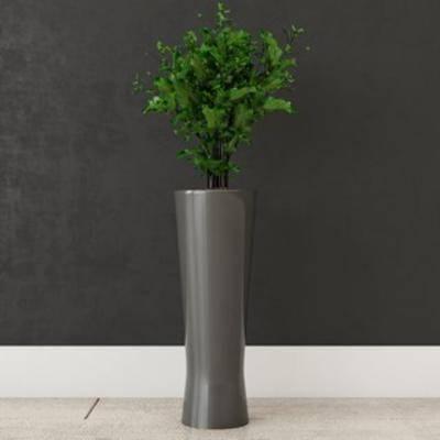 花卉盆栽植物, 盆栽装饰品, 植物装饰品, 盆栽, 植物, 现代