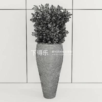 花卉盆栽植物, 盆栽装饰品, 盆栽植物, 植物装饰品, 装饰品, 现代