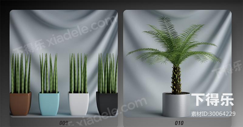 20套下得乐室内盆栽植物模型合集,盆栽