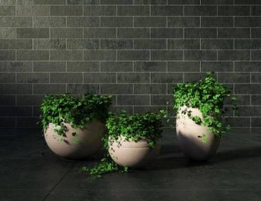 花卉盆栽植物, 盆栽植物, 摆设, 装饰, 现代, 下得乐3888套模型合辑