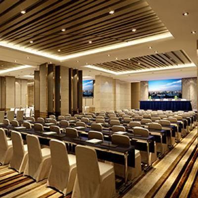 桌椅组合, 盆栽, 现代, 会议室, 灯, 演讲台, 颁奖台