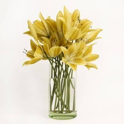 摆设品, 花瓶, 装饰品, 植物