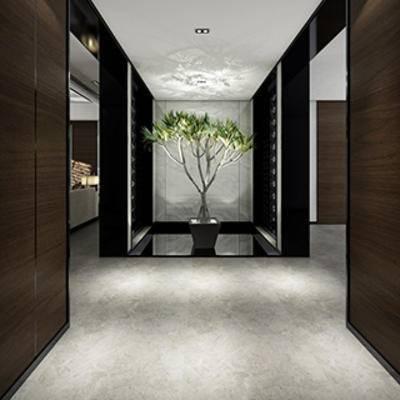 玄关台, 现代简约, 盆栽