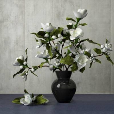国外模型, 花卉盆栽植物, 花瓶, 植物, 现代