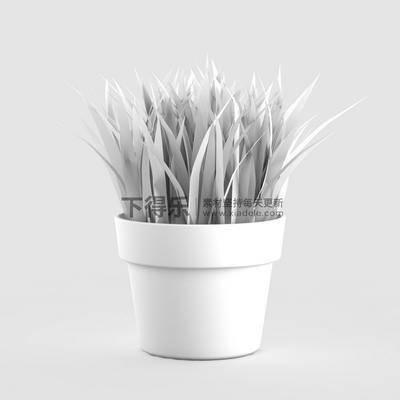 国外模型, 花卉盆栽植物, 现代简约, 盆栽, 植物, 现代