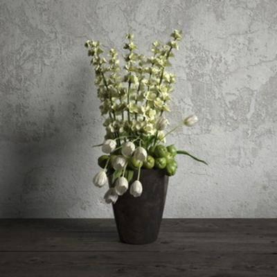 现代盆栽, 国外模型, 现代简约, 现代, 盆栽, 植物