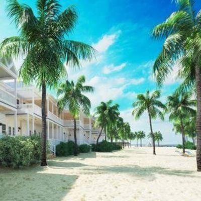沙滩, 空间, 室外建筑, 别墅, 现代, 室外, 树木