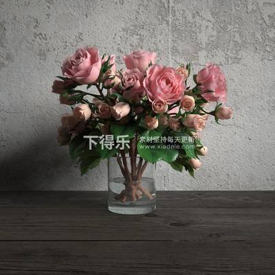现代简约, 盆栽, 植物, 现代