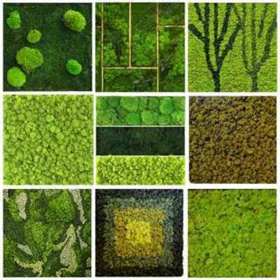 植物贴图, 植物墙贴图, 墙