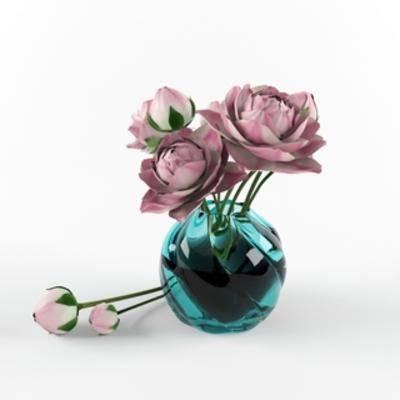 现代花瓶植物, 现代植物, 现代花瓶, 植物, 现代