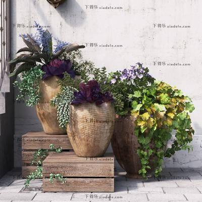 现代植物, 现代盆栽, 现代简约, 盆栽, 植物, 现代