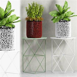 植物,现代简约,现代盆栽,现代植物