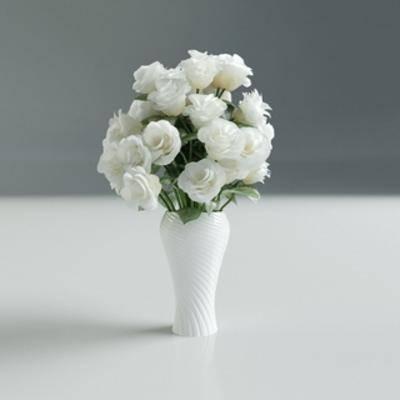 现代植物, 现代花瓶, 花瓶植物, 现代简约, 现代