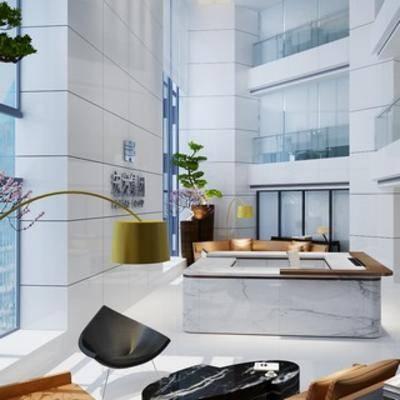 植物, 落地灯, 现代千亿国际app 娱乐网站, 办公室, 前台, 接待厅