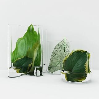 植物,现代简约,花瓶,陈设品组合