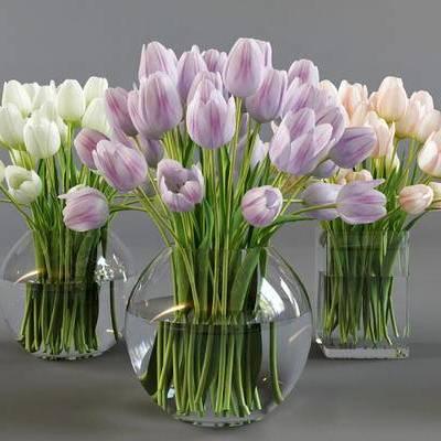 现代简约, 鲜花, 植物, 花瓶