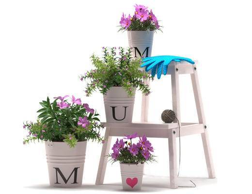 北欧简约, 植物盆栽, 鲜花