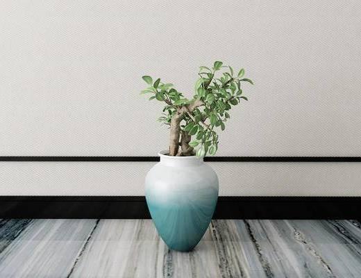 植物, 盆栽, 新中式