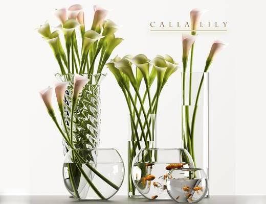 植物, 摆件, 现代, 鱼缸, 金鱼, 花瓶