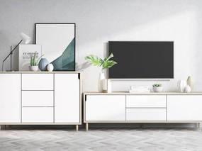 北欧简约, 电视柜, 柜子组合, 植物盆栽, 电视, 下得乐3888套模型合辑