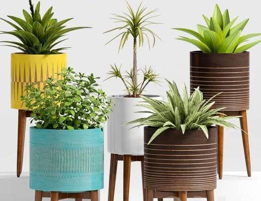 北欧简约, 摆件, 植物盆栽