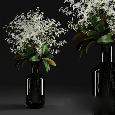 盆栽, 花瓶, 现代, 植物