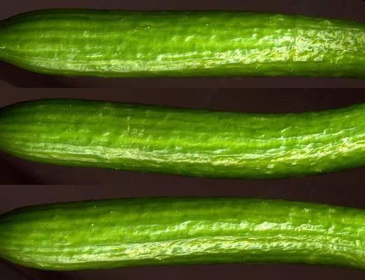 食物, 蔬菜貼圖, 蔬菜, 現代