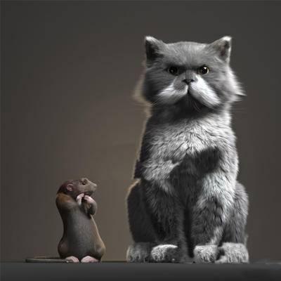 现代动物, 动物, 爬行动物, 猫