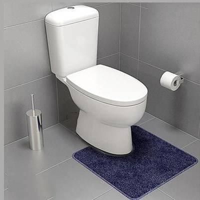 现代, 卫浴, 马桶