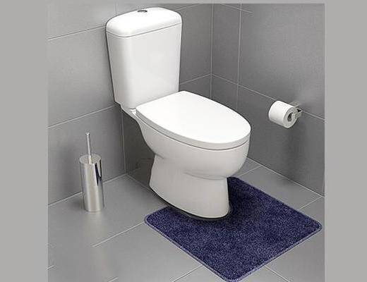 現代, 衛浴, 馬桶