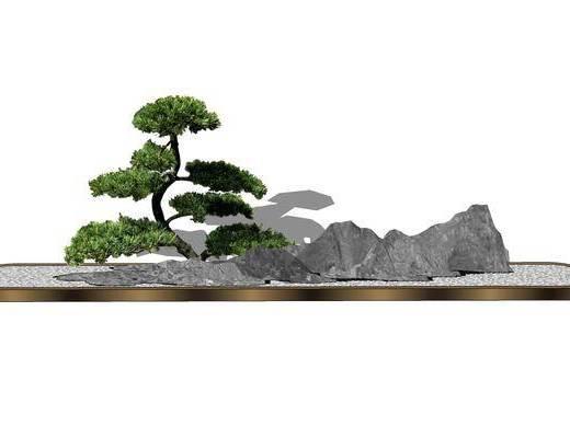 盆栽, 現代