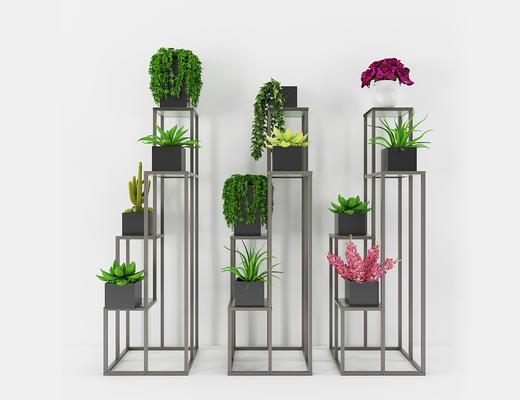 现代简约, 植物组合, 盆栽