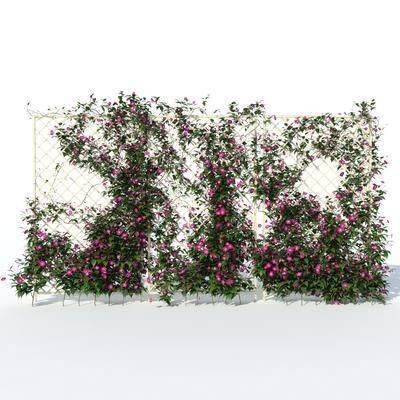 简欧, 田园, 花卉, 栅栏