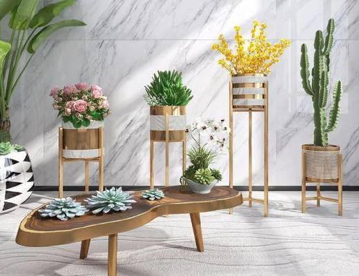 现代简约, 花瓶, 植物盆栽