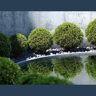 现代, 植物, 室外, 1000套空间酷赠送模型