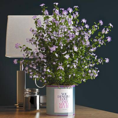 盆栽, 花, 紫色, 台灯